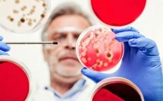 Уреаплазма у мужчин. Симптомы и лечение самыми эффективными препаратами